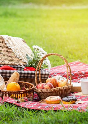 הבילוי המושלם לקורונה: 6 מתכונים טעימים לפיקניק
