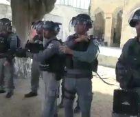 חדשות, מבזקים, משפט ופלילים מהומה בהר הבית: פורעים יידו אבנים על שוטרים