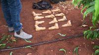 חדשות, חדשות צבא ובטחון, מבזקים 12 אקדחים נתפסו: סוכל הברחת נשק בגבול לבנון